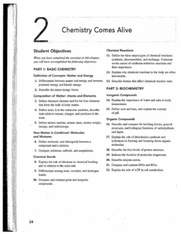 Anatomy Phys Chapter 2 Study Guide (2)